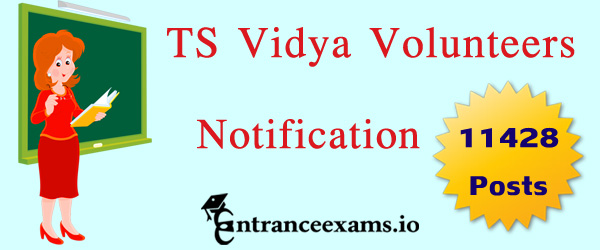TS Vidya Volunteers Notification 2017   11,428 Telangana School Teacher Jobs