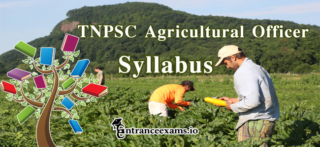 TNPSC AAO Syllabus 2017   Download Tamilnadu PSC AAO Exam Pattern